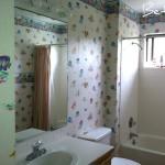 Bathroom in Need of Updates